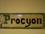 Habitacion_procyon